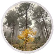 Yellow Tree In The Foggy Forest Round Beach Towel