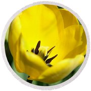 Yellow Tulip Cup Round Beach Towel