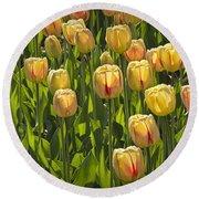 Yellow Tulip Flowers On Windmill Island In Holland Michigan Round Beach Towel