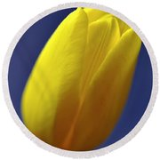 Yellow Tulip On Blue Background Round Beach Towel