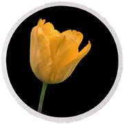 Yellow Tulip Open On Black Round Beach Towel