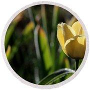 Yellow Tulip With Dew Round Beach Towel