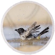 Yellow-vented Bulbul Round Beach Towel