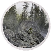 Yellowstone - The Rock Tree Round Beach Towel