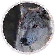 Yellowstone Wolf Round Beach Towel