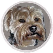 Yorkshire Terrier- Drawing Round Beach Towel