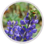Yosemite Lupine And Ladybug Round Beach Towel