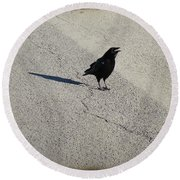 Young Cawing Crow Round Beach Towel