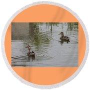 Young Ducks Round Beach Towel