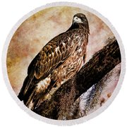 Young Eagle Pose II Round Beach Towel
