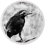Young Grackle Round Beach Towel