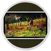 Young Moose In Autumn Round Beach Towel