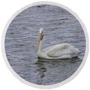 Young Pelican Round Beach Towel