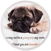 Young Pup Round Beach Towel