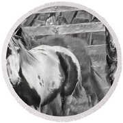 Young Stallions Round Beach Towel