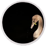 Young Swan Round Beach Towel