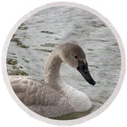 Young Trumpeter Round Beach Towel
