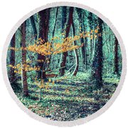 Youngster Round Beach Towel by Hannes Cmarits