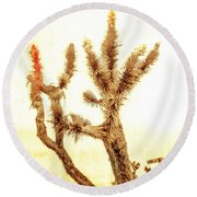 Yucca At Ave. J And 187 St. Round Beach Towel