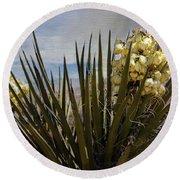 Yucca Blooms Round Beach Towel