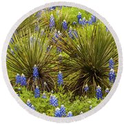 Yucca With Bonnets Round Beach Towel