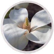 Yulan Magnolia  4591 Round Beach Towel
