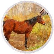 Yuma- Stunning Horse In Autumn Round Beach Towel