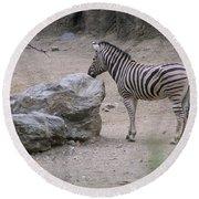 Zebra And Rock Round Beach Towel