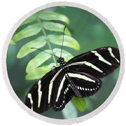 Zebra Butterfly Round Beach Towel