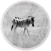 Zebra Explorer Round Beach Towel