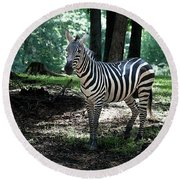 Zebra Forest 2 Round Beach Towel