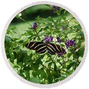 Zebra Longwing Butterfly On Flower Round Beach Towel