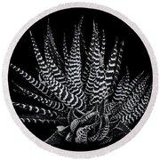 Zebra Succulent Round Beach Towel