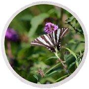 Zebra Swallowtail Butterfly In Garden Round Beach Towel