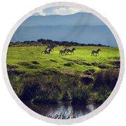 Zebras On Green Grassy Hill. Ngorongoro. Tanzania Round Beach Towel