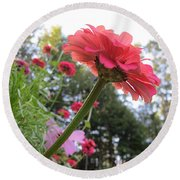 Zinnia Side View Round Beach Towel