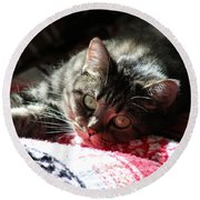Angel Cat Round Beach Towel