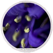 Bluebells Round Beach Towel