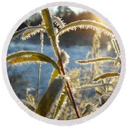 Frost On Willow At Sunrise Round Beach Towel