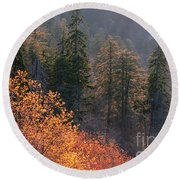 Great Smoky Mountains Morning Round Beach Towel