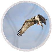 Osprey Lunch To Go I Round Beach Towel