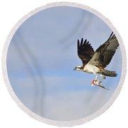 Osprey Lunch To Go II Round Beach Towel