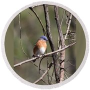 Sucarnoochee River - Bluebird Round Beach Towel