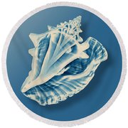 X-ray Of A Conch Shell Round Beach Towel