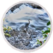 0005 Blue Heron At Glen Falls Williamsville Ny Round Beach Towel
