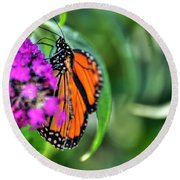001 Making Things New Via The Butterfly Series Round Beach Towel