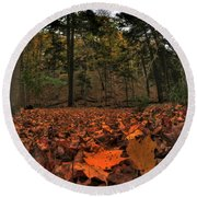 0013 Letchworth State Park Series Round Beach Towel