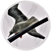 002 Gull To Out Do Wallenda Round Beach Towel