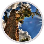 002 Reaching For The Sky Round Beach Towel