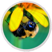 003 Sleeping Bee Series Round Beach Towel